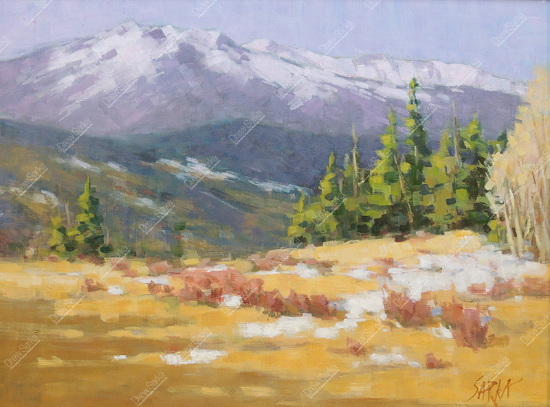 View from Kenosha Pass, 18x24