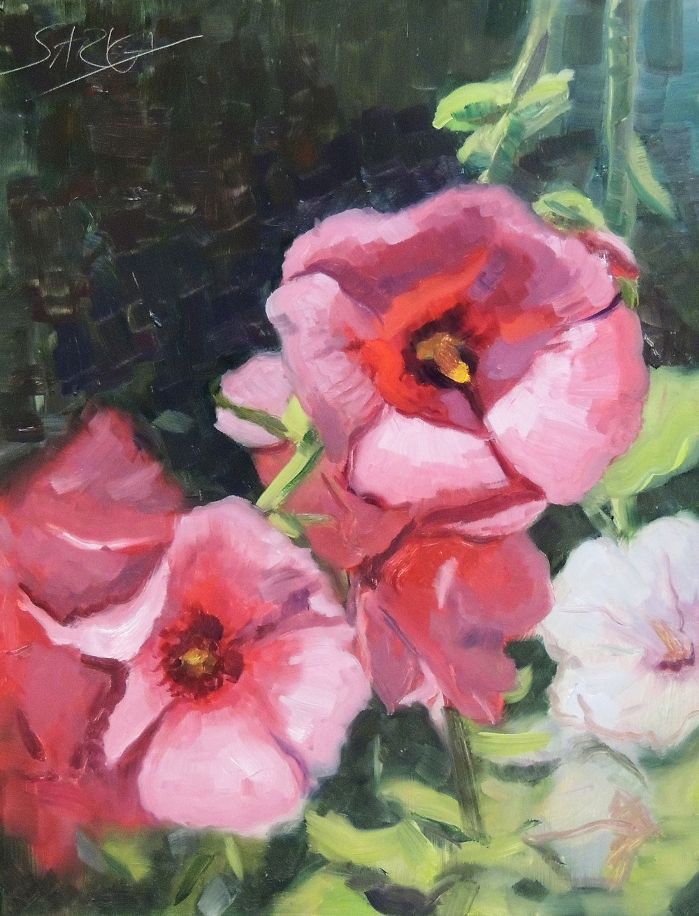 Hollyhocks,  11x14