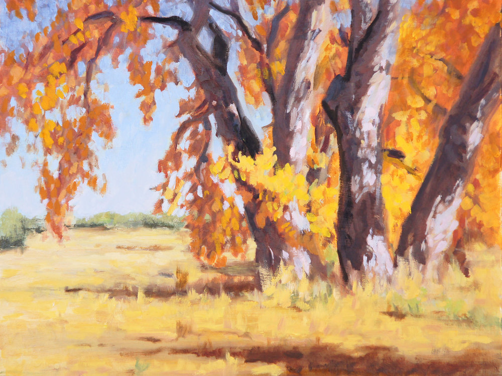 Fall Cottonwoods
