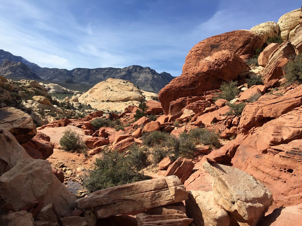 honestlysarcastic,redrock,redrockcanyon,calicotanks,redrockcanyoncalicotanks,hike,explore,adventure,birthday