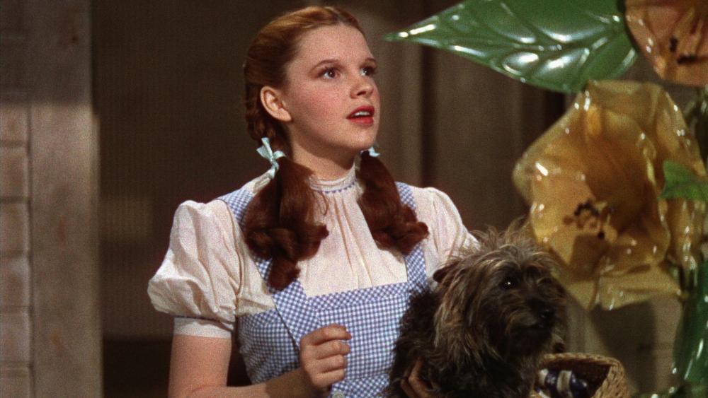 Judy Garland as Dorothy Gale / © Warner Home Video