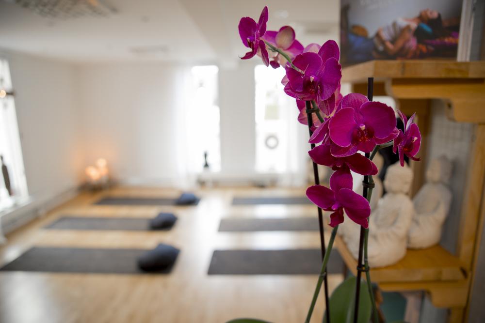 WellnessHouse Yoga Barsebäcksvägen 19 Löddeköpinge     www.wellnesshouse.nu