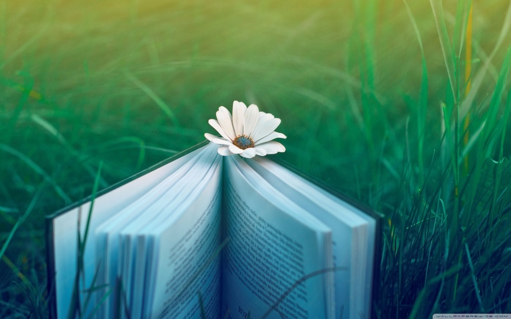 reading_invitation-wallpaper-1440x900.jpg