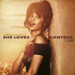 she loves control remix artwork.jpg