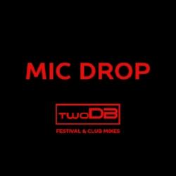 MIC drop remix artwork.jpg