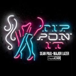 tip pon it remix artwork.jpg