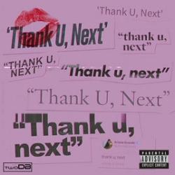 thank u next remix artwork.jpg