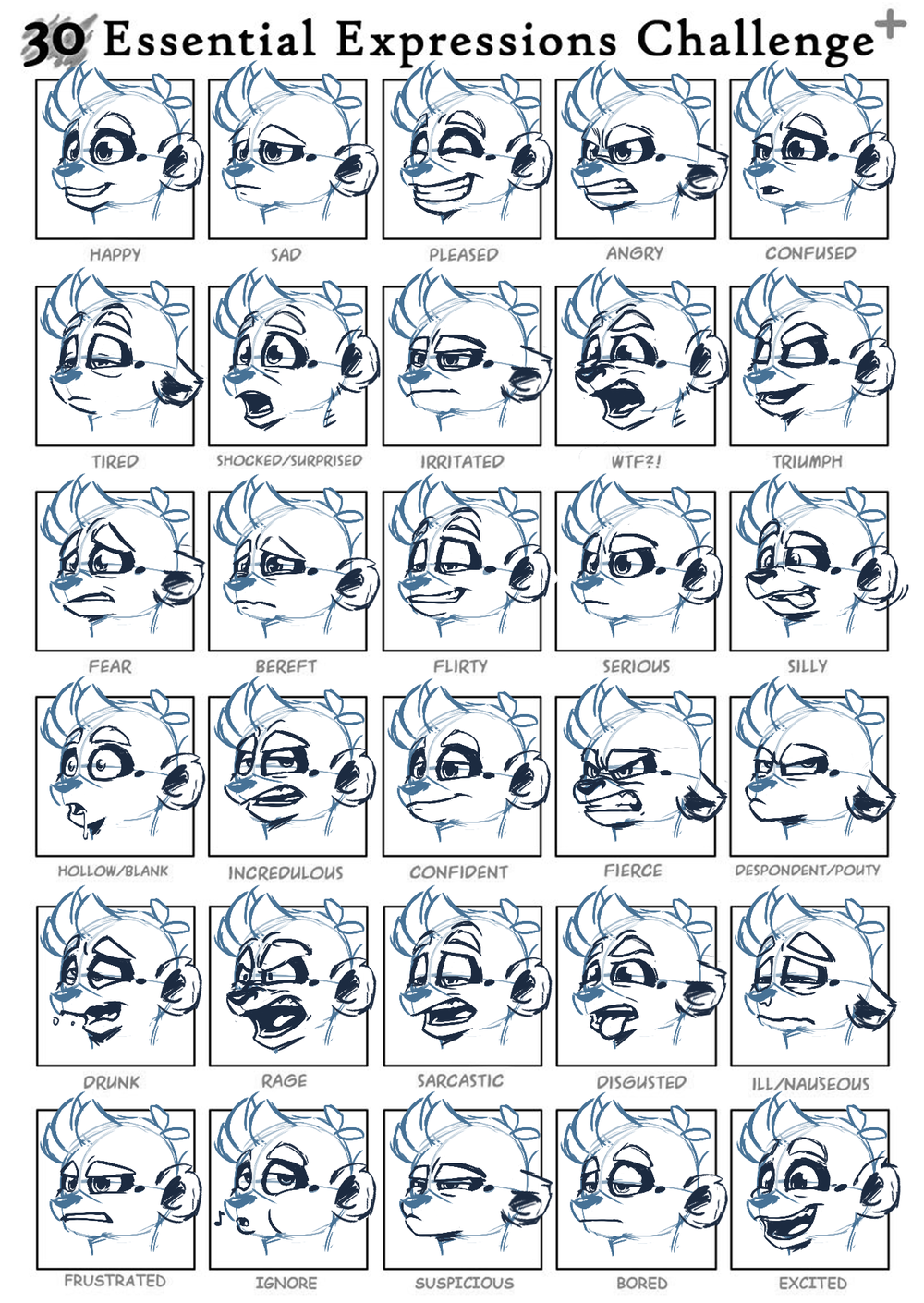 Norman Expression Sheet