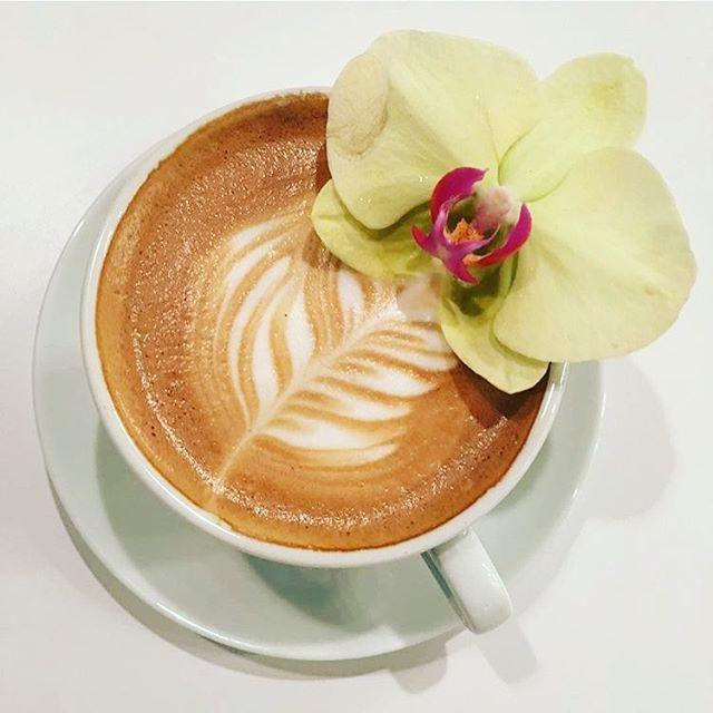 Latte @elizard______ #denver #coffeegram #coffeehouse @bridge_span_14
