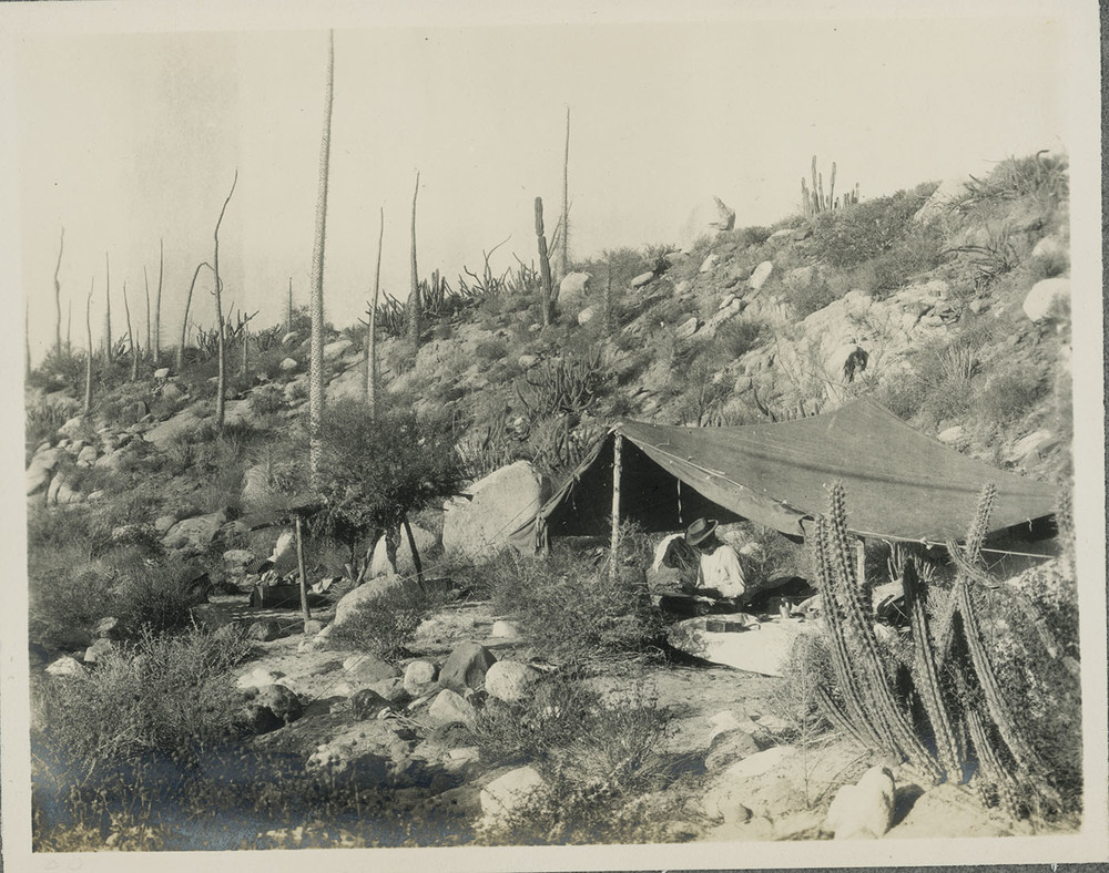 Camp at Yubay.jpg