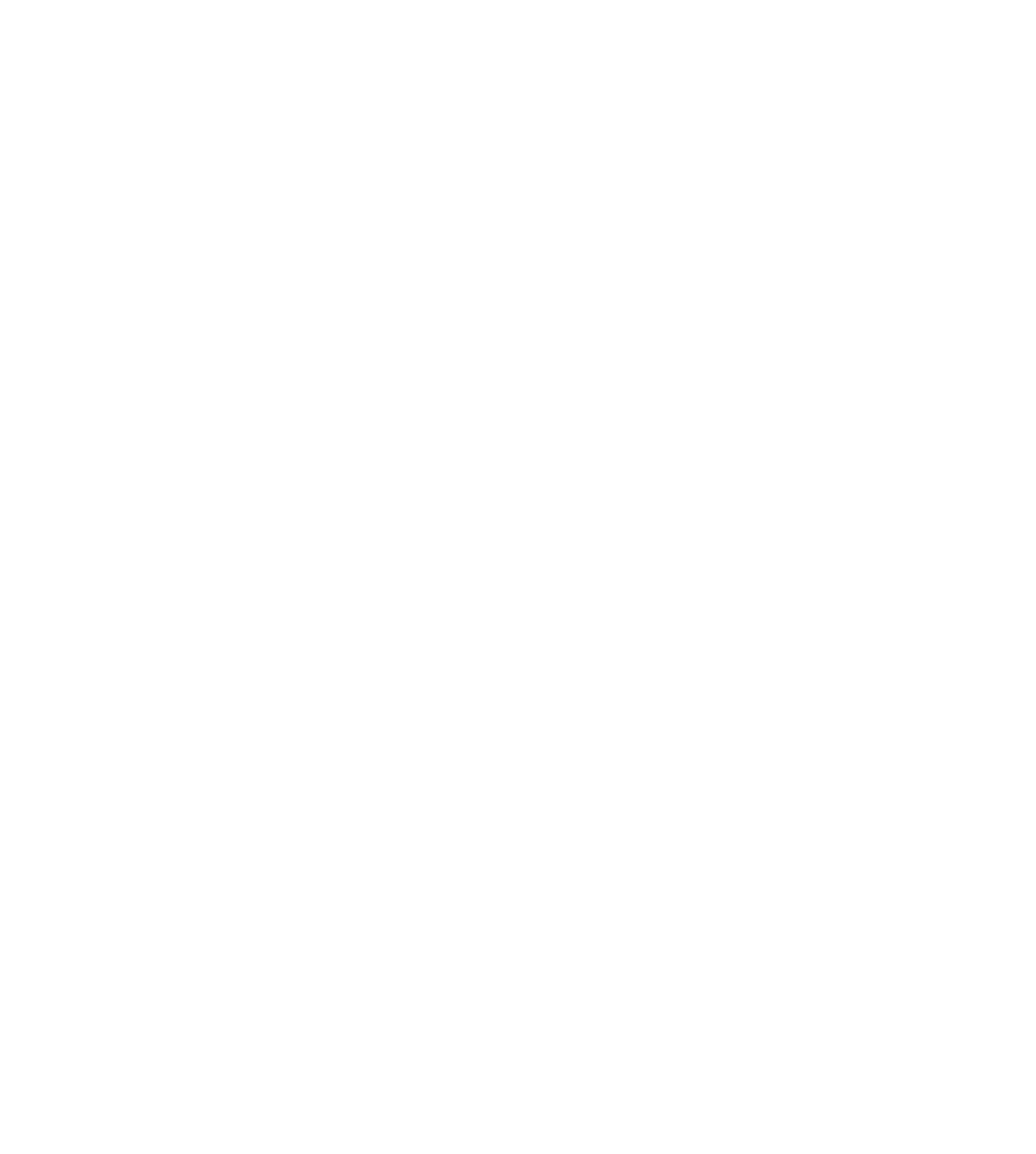 Black Platinum Illusions LLC