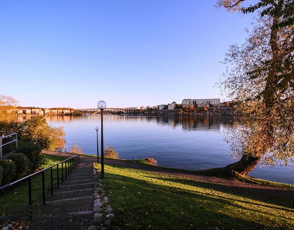 Vår vackra utsikt från Essinge Konferenscenter.
