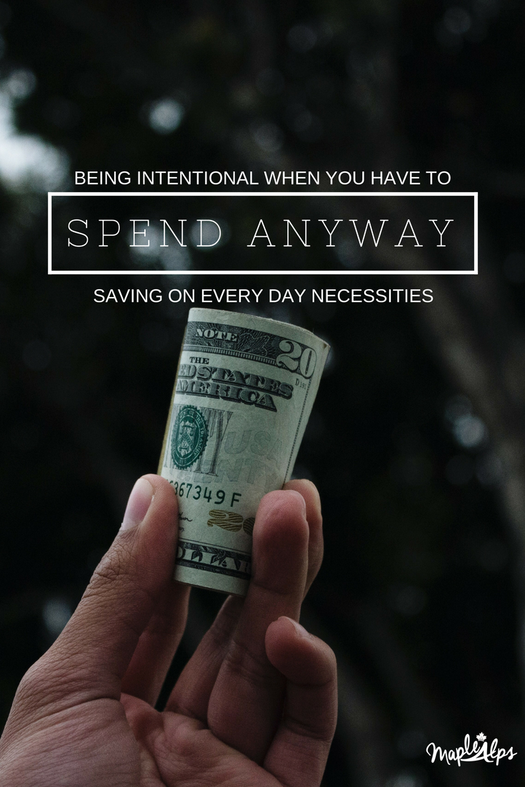 cessities We Are Intentional About Spending Money On | www.maplealps.com