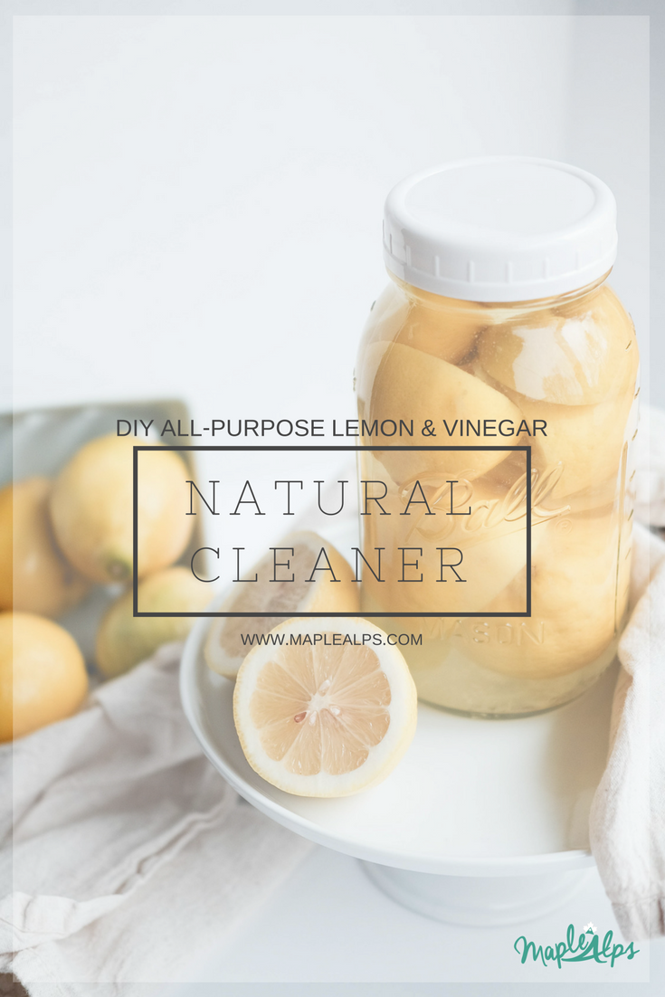 DIY All-Purpose Cleaner | www.maplealps.com