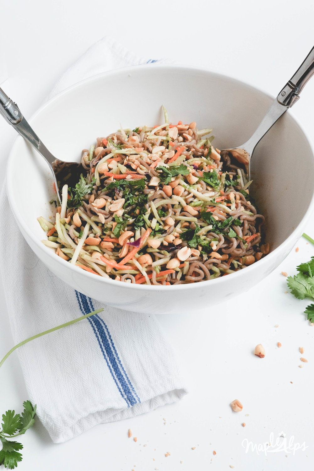 Asian Style Noodle Salad | www.maplealps.com