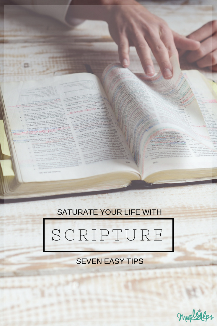 Saturate Your Life with Scripture | www.maplealps.com