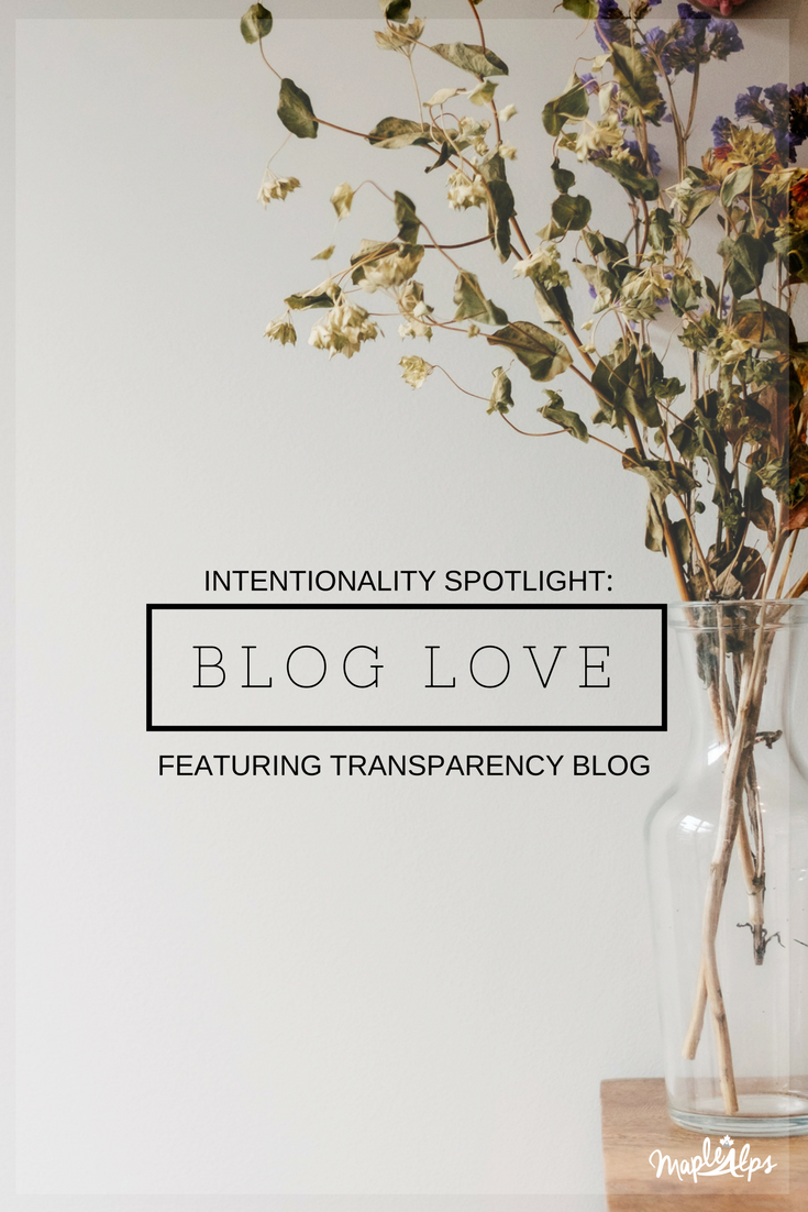 Intentionality Spotlight: Blog Love: Transparency Blog | www.maplealps.com