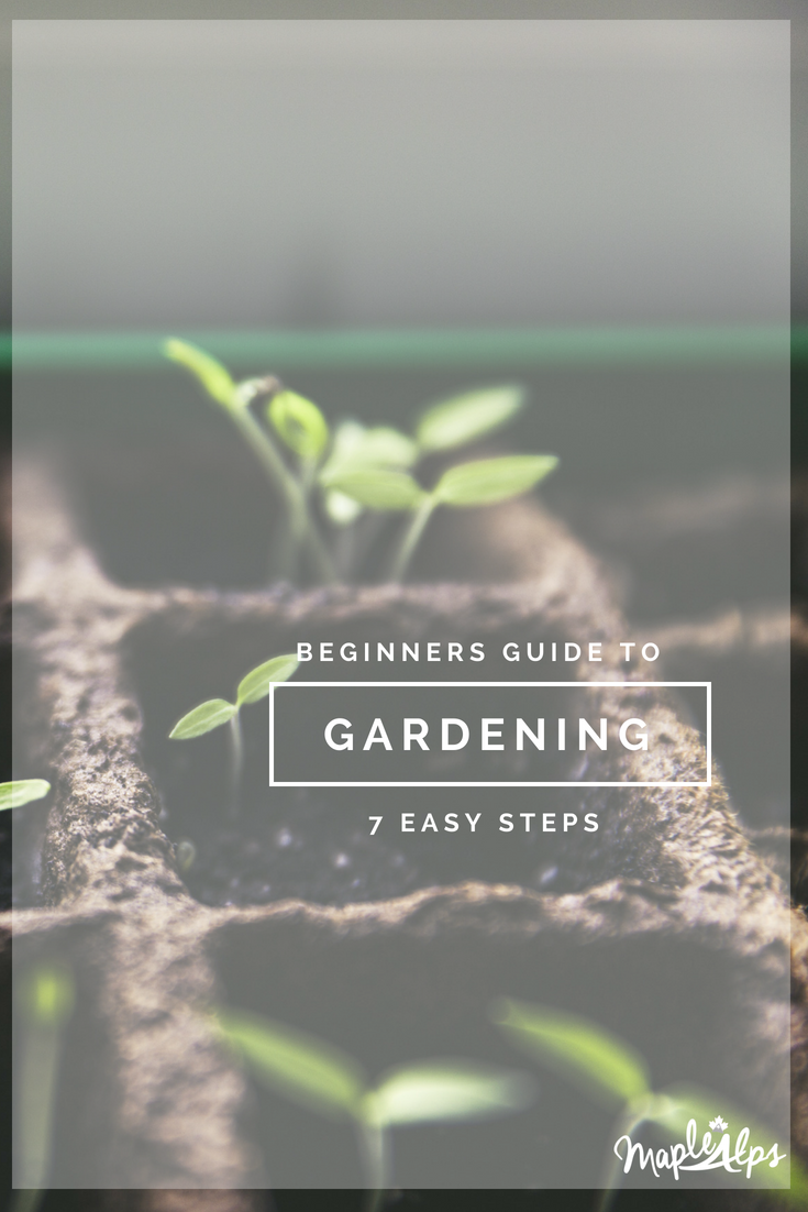 Beginners Guide to Gardening: 7 Tips | www.maplealps.com