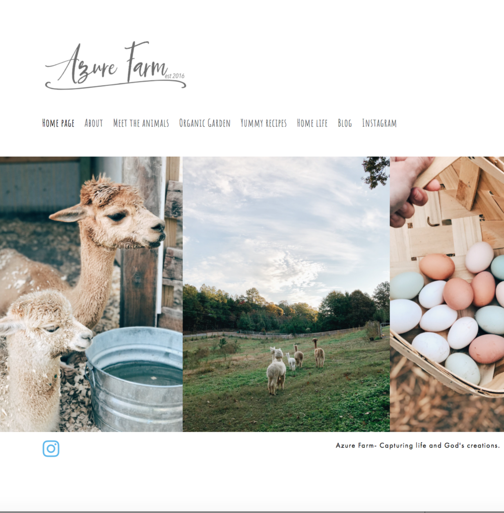 Intentionality Spotlight: Blog Love: Azure Farm | www.maplealps.com