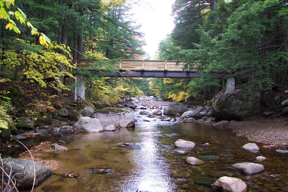 BIG PINES TRAIL Bridge (2002), HEMENWAY STATE FOREST