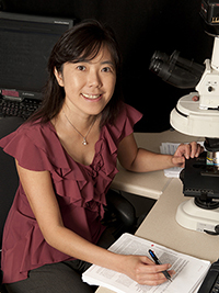 Tian-Li Wang, PhD   Professor of Pathology and Oncology  Faculty, Pathobiology Graduate Program