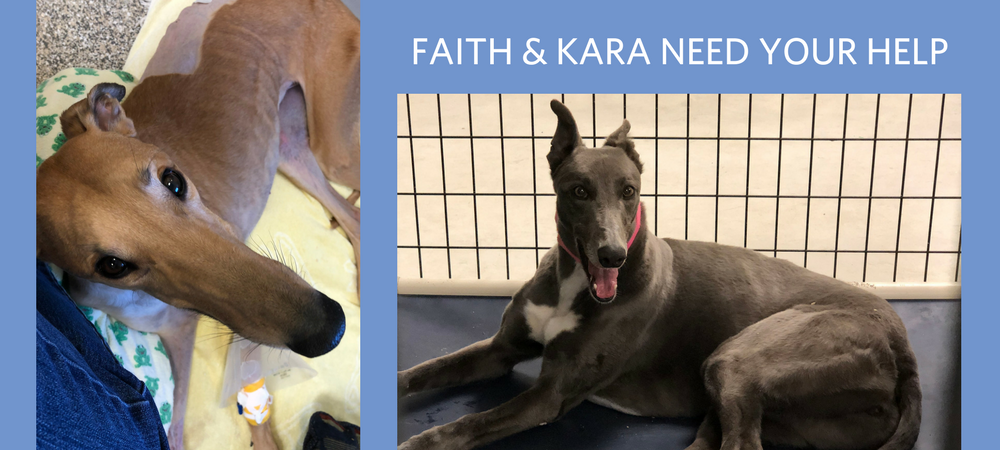 Faith & Kara Need Your Help