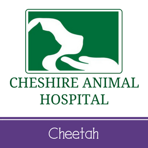 Cheshire Animal Hospital