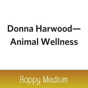 2018 Chili Sponsor logos formatted_Donna-Harwood.png