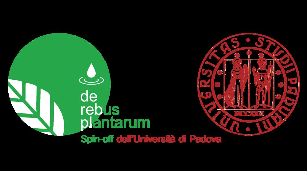 logo padua DRP e Unipd.png