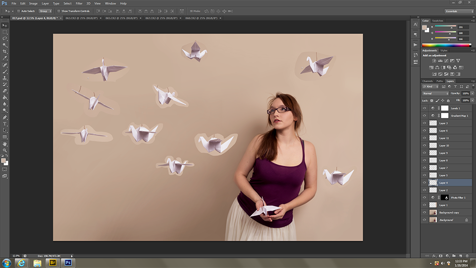 Edited the portrait (dodge and burn, added some contrast, expanded the background) and started cutting out cranes.