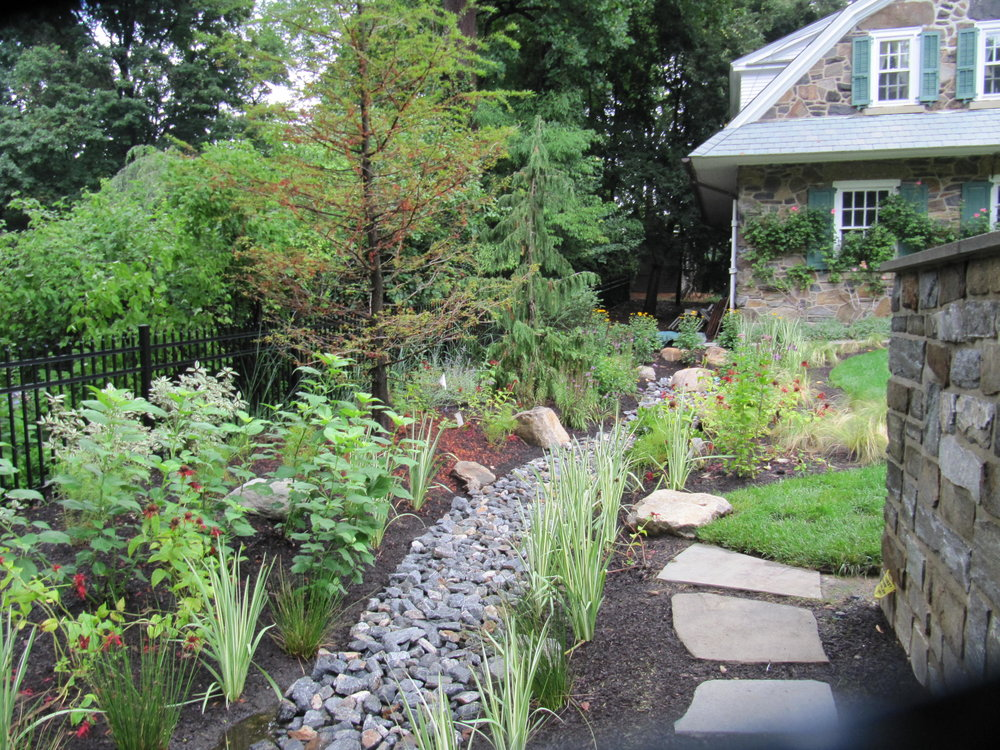 Stormwater Bioswale - A combination of rain garden ,rock swale, and underground basin, these are perfect for reducing or even eliminating your property's storm runoff and alleviating common stormwater issues which can violate local municipal stormwater codes.
