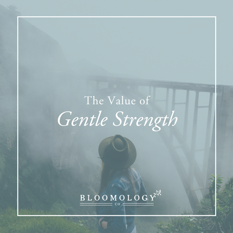 The-Value-of-Gentle-Strength