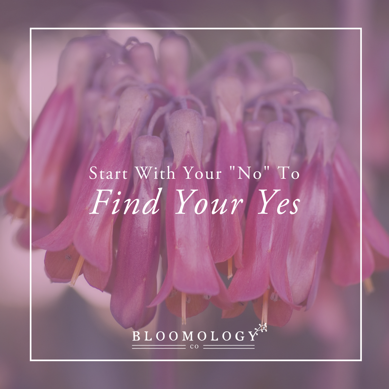 """Start With Your """"No"""" to Find Your """"Yes"""" 