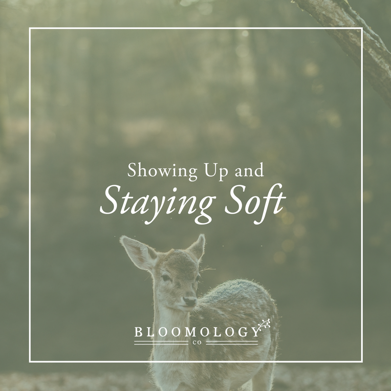 Showing Up and Staying Soft | bloomology.co