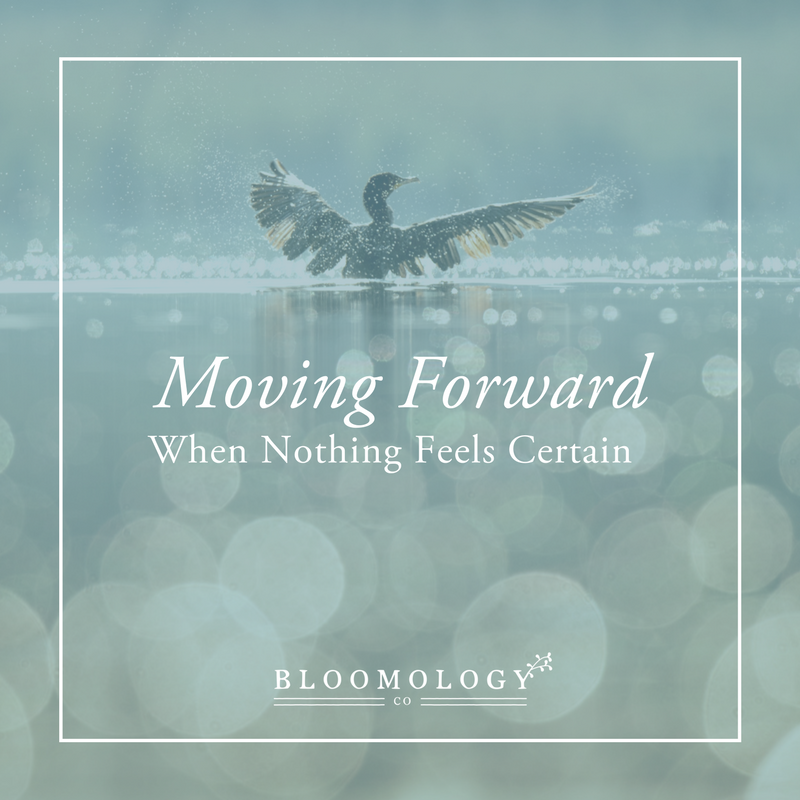 Moving Forward When Nothing Feels Certain | Bloomology.co