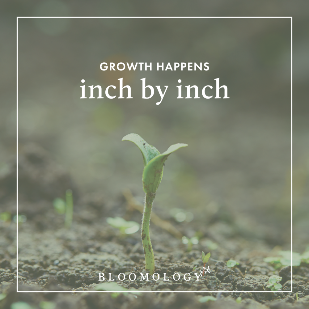 Growth Happens Inch by Inch | Bloomology.co