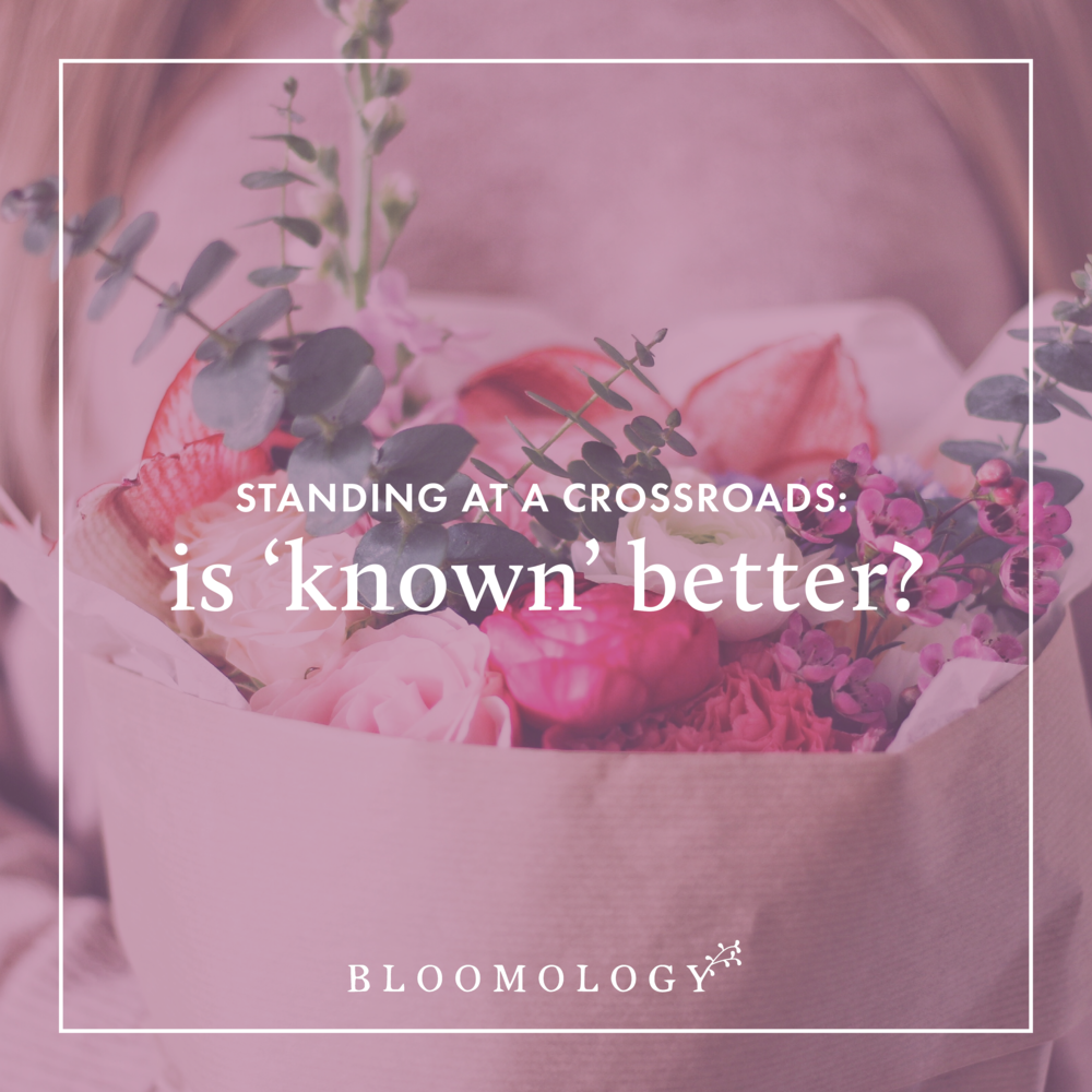 Is a Known Quantity Always Better? | Bloomology.co