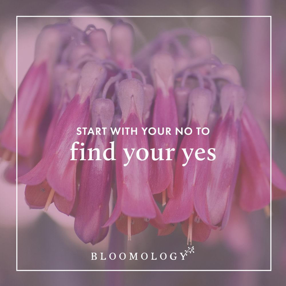 "Start With Your ""No"" to Find Your ""Yes"" 