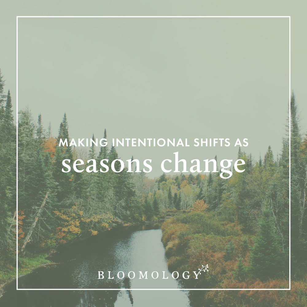 Making Intentional Shifts as Seasons Change | Bloomology.co