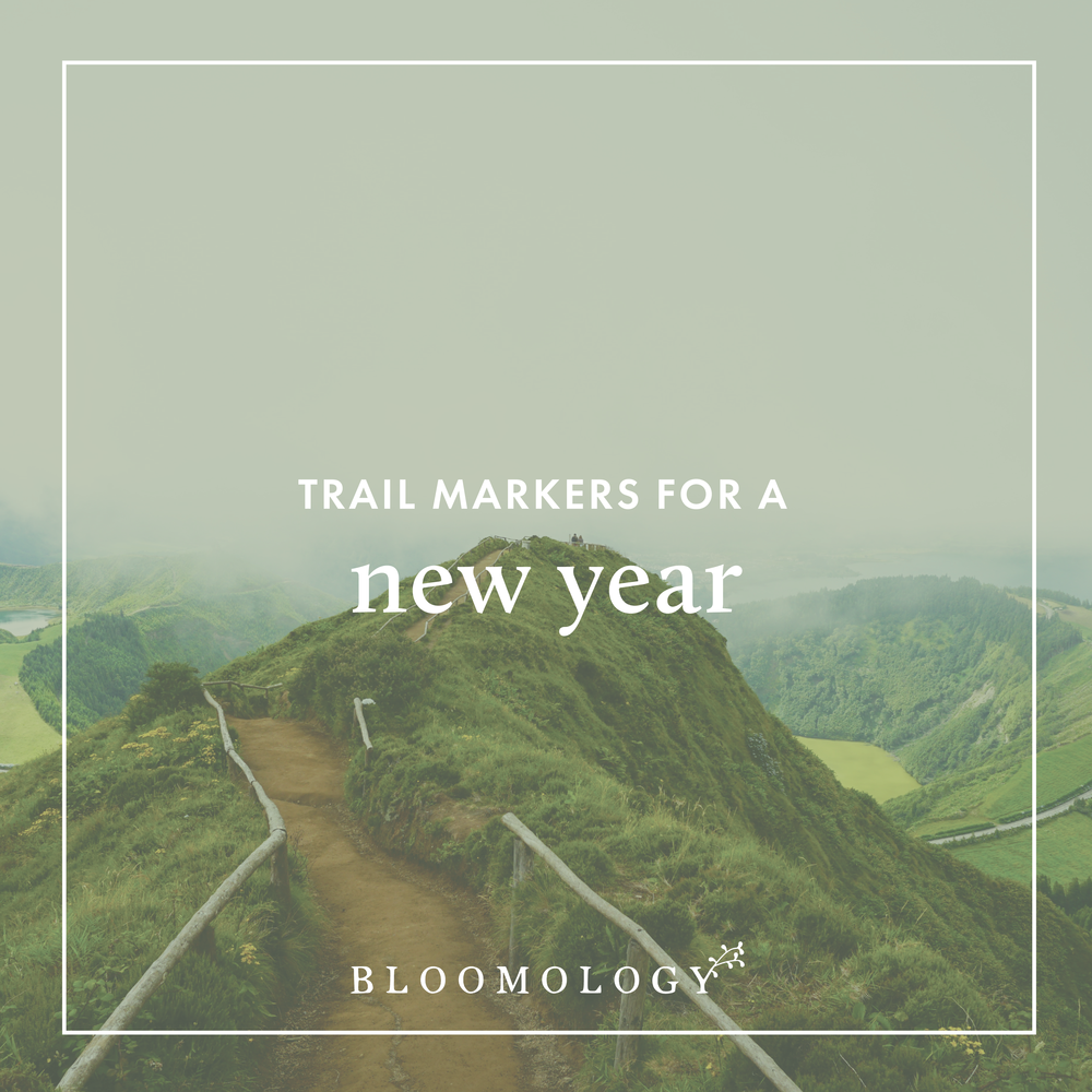 Trail Markers for a New Year | Bloomology.co