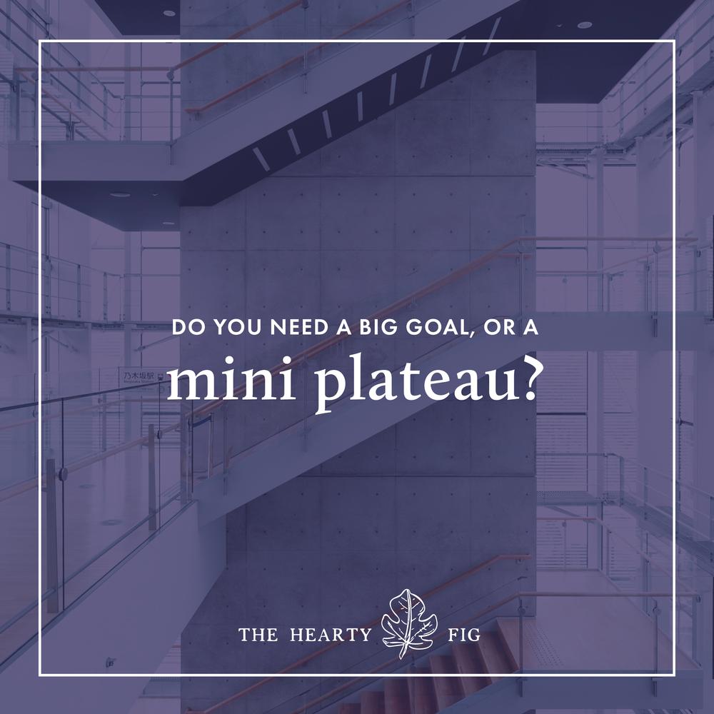 Do You Need a Big Goal or Mini Plateau? | Bloomology.co