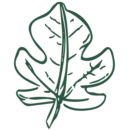green-leaf.png
