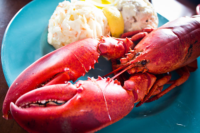 640px-Lobster_Dinner_(6013079655).jpg