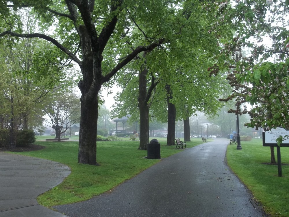 Bar Harbor's Village Green in the early morning mist.
