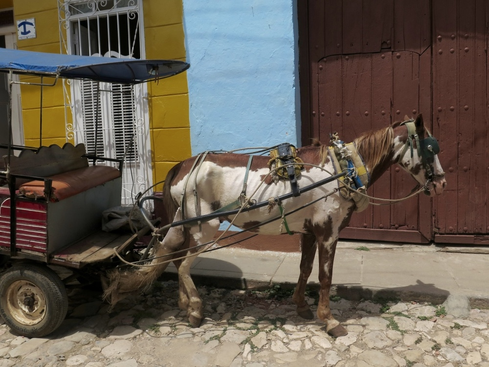 Horse and Cart, Trinidad, Cuba