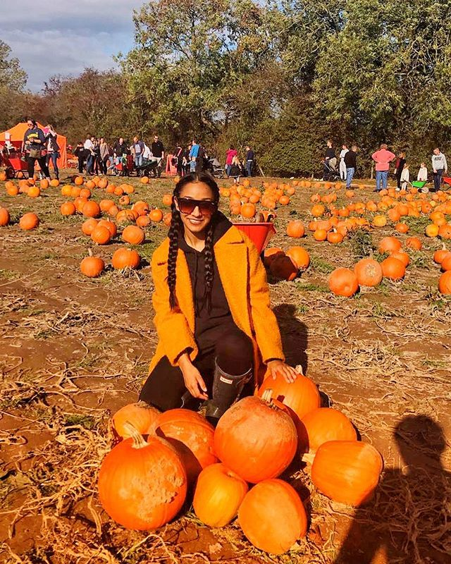 First time for everything, including pumpkin picking! 🎃 . . . #halloweencostume #halloweenhorrornights #pumpkins #halloweenie #halloween #halloweenfun #halloweenmakeup #fall #october #halloweentime #halloween2018 #pumpkin #autumn #halloweenparty #pumpkinpatch #halloweennight #boo #scared #spooky #scary #ghost #pumpkinpicking