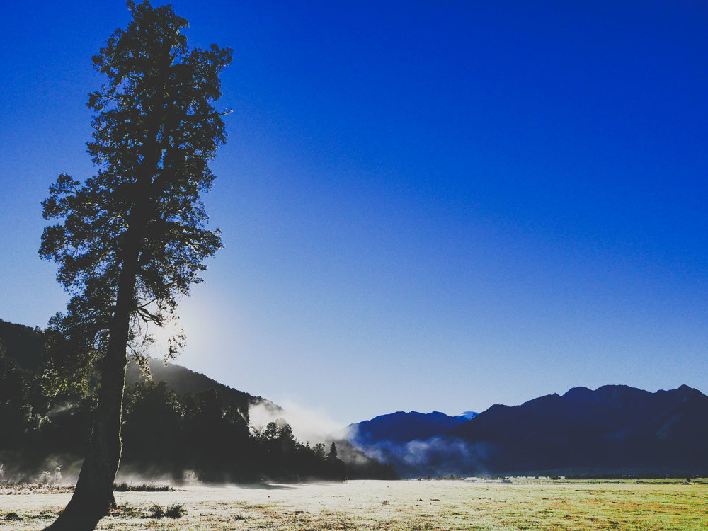 Sunrise during the morning walk to Lake Matheson