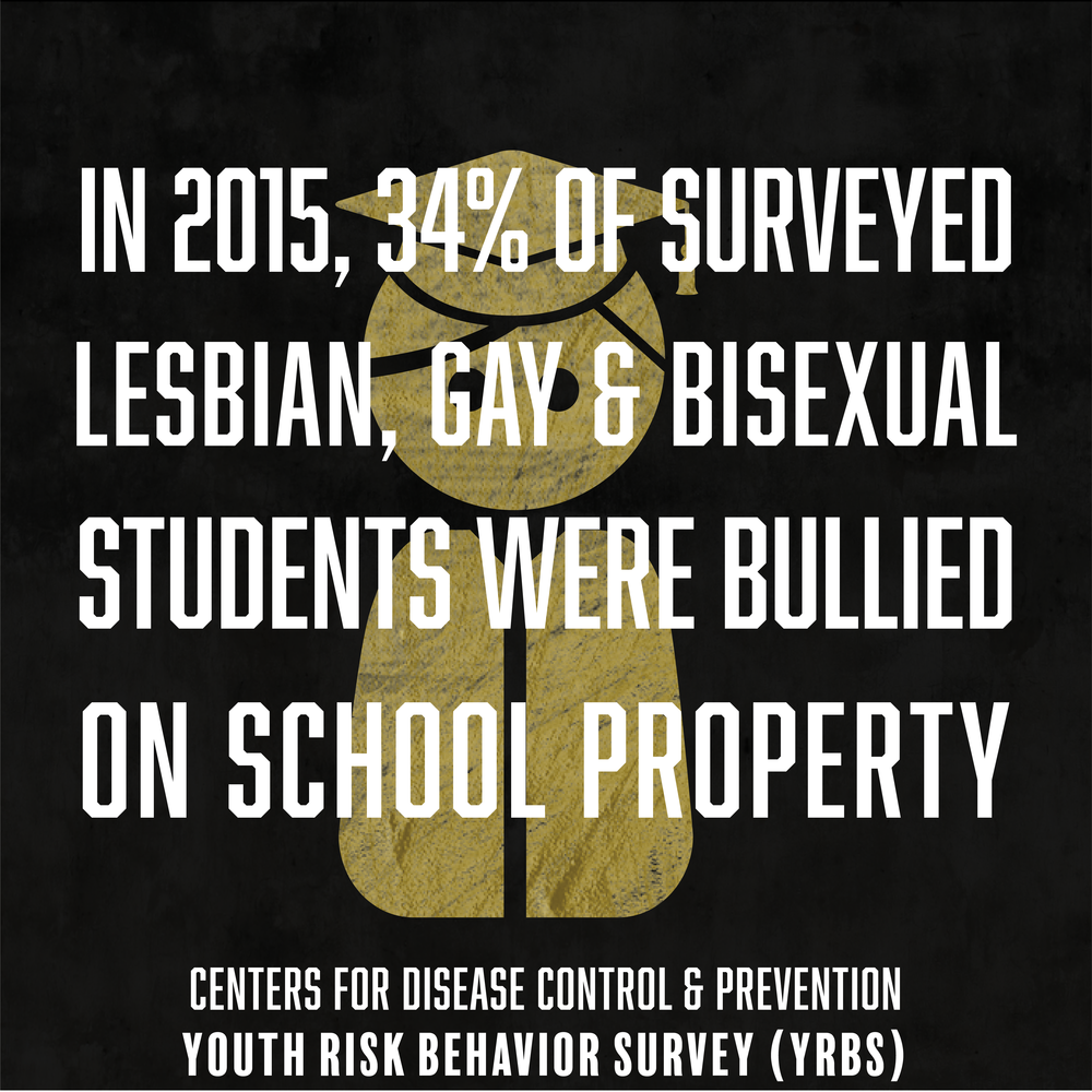 WeThe504 Stats_LGB Bullied.png