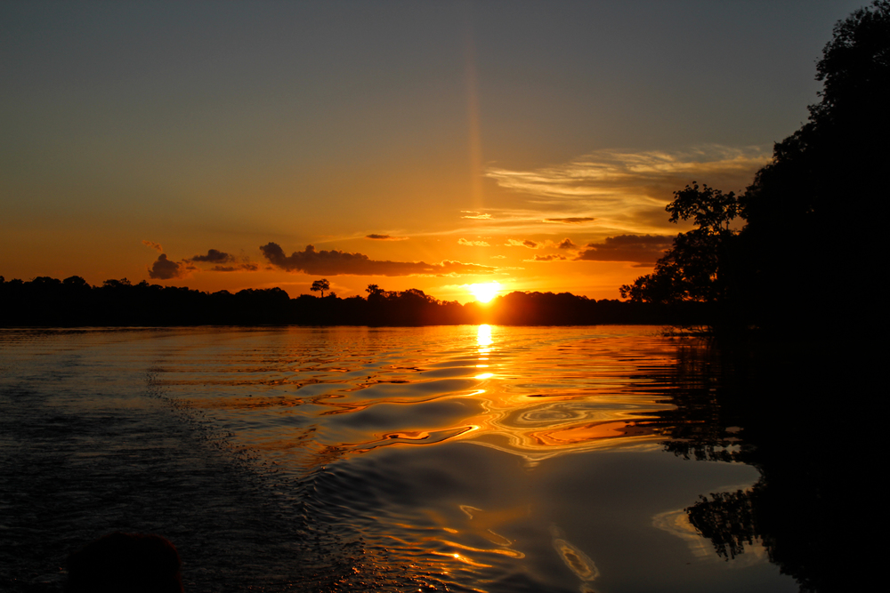 Another Amazon sunset, this time in the Juma Reserve