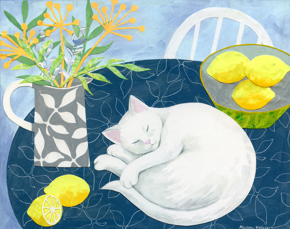 White Cat on Blue